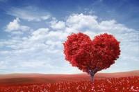 ほどほどに愛しなさい。長続きする恋はそういう恋だよ。