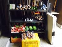 野菜が入荷