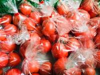 大橋さんのトマト入荷