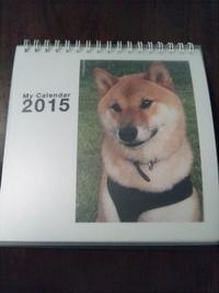 柴犬孝太のカレンダー
