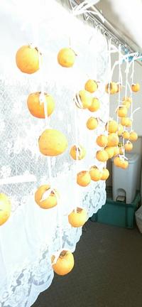 干し柿作りの季節です!