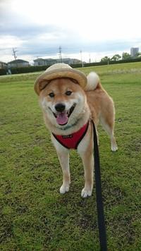 お帽子かぶってるんるんるん♪