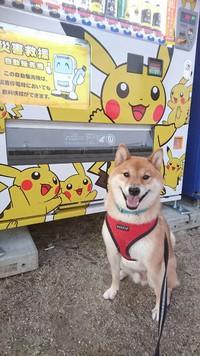 ピカチュウの災害救援自動販売機