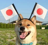 がんばれニッポン!