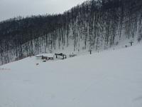 1年ぶりのスキー