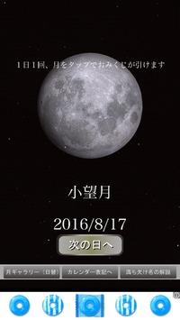 明日は満月。産卵の日。
