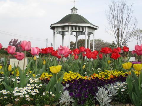 春の西山公園