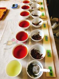 豊橋市後藤製茶さん製茶体験へ