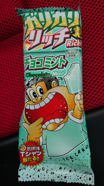 これ、美味しすぎ~♪(#^^#)【ガリガリ君リッチ チョコミント味】