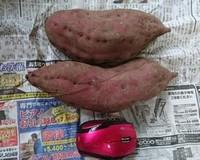 さつま芋の天ぷら(*^_^*)