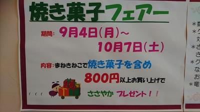 上手なシュークリームの食べ方(#^.^#)【まねきねこ】
