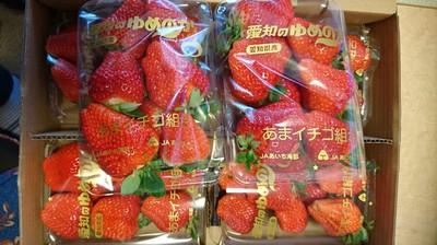いちご狩りに行ったつもりでいちごを爆買い(#^^#)【東郷町タチヤ】