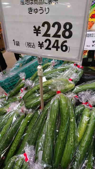 四つ葉キュウリは太くて長い(о´∀`о)【イトーヨーカドー】