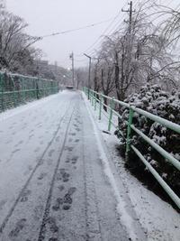 2/14 散歩♪