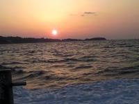 5月10日 豊浜大進丸からのアジ釣り