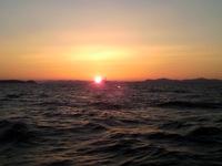 3月15日(土)豊浜大進丸からのフグ釣り