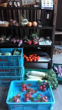 新鮮野菜もころも農園で!