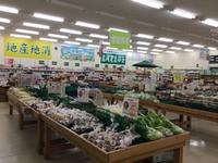 JAあいち豊田 グリーンセンター高岡試食会開催