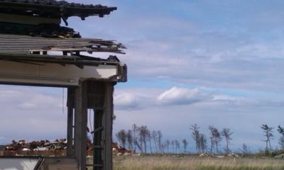 東北海岸林再生支援