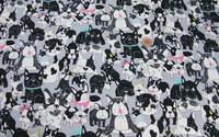 綿オックス地 新柄入荷しました part2 人気のブルドッグ柄(5色)です。 2016/02/06 20:53:01