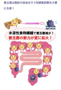腸内細菌の検査薬を探しに岐阜へ 2019/01/19 12:44:39