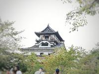 国宝犬山城見学に行ってきました♪