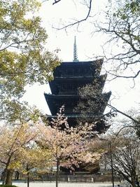 桜咲く京都へ☆東寺~伏見稲荷