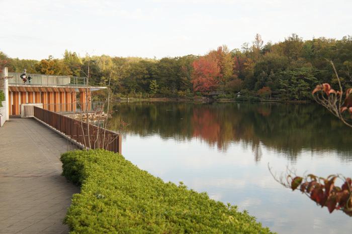 子どもを連れてモリコロパークでお散歩♪お出かけ♪(正式名称:愛・地球博記念公園!)