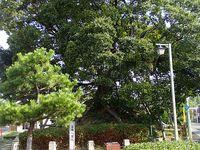 笠寺観音6の市
