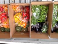 くらら農園さんの野菜BOX~豊田市松平地区から届く旬野菜~2