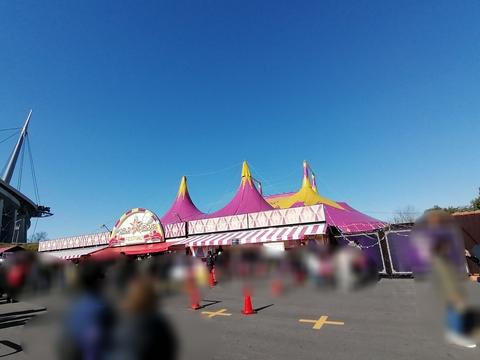 ポップサーカスを見に行こう( ノ^ω^)ノ