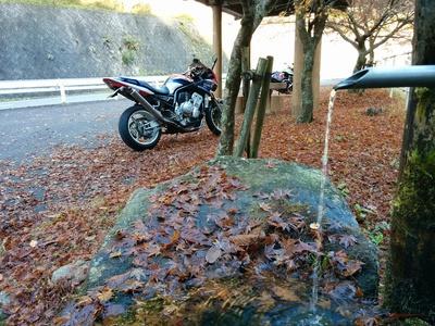 紅葉の上でバイク撮影会(^.^)?
