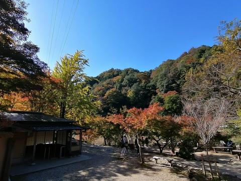 秋だから香嵐渓に行こう( ´∀` )③
