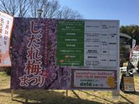 【しだれ梅まつり】名古屋市農業センター。 2017/03/05 17:05:36