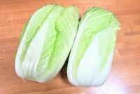 白菜1つ100円、ありがたや~。