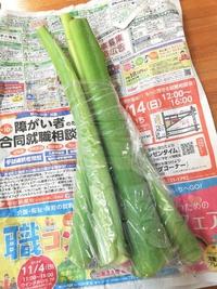 変わった野菜♪