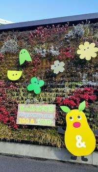 ゾウさんソフト&コアラソフトと東山動植物園(名古屋市)