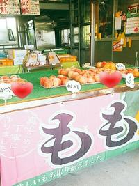 フルーツ☆ヴァカンス はせがわ農園さんの桃がいっぱい (豊田市)
