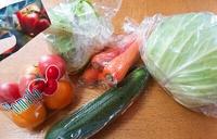 JAあいち豊田 グリーンセンター&産直プラザで新鮮野菜ゲット!