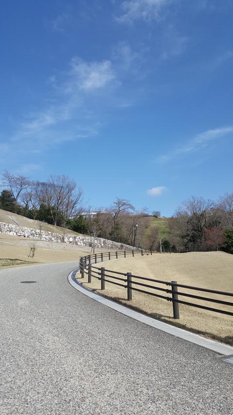 鞍ヶ池公園にて(豊田市)