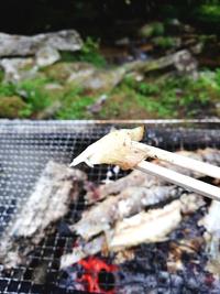 マス釣りとBBQ!大自然の野原川観光センター(豊田市)