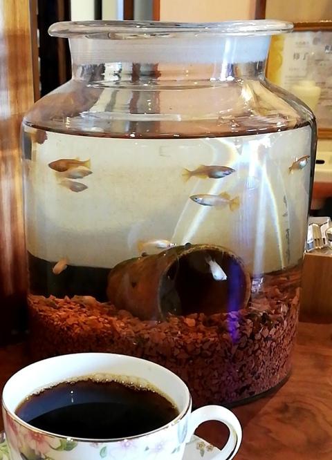 限定珈琲と、昔ながらの固めプリン 【岡崎市 自家焙煎珈琲のお店 uchi  coffee(ウチコーヒー)】
