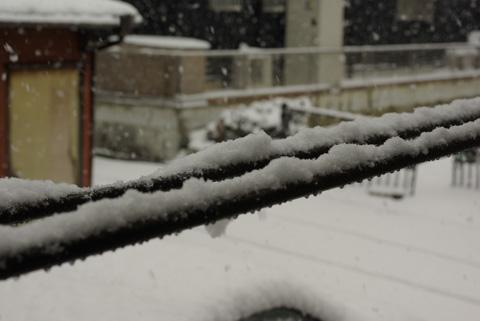 雪とゆきちゃん