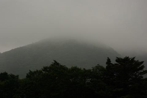 富士サファリパーク その2〜ウォーキングサファリ編