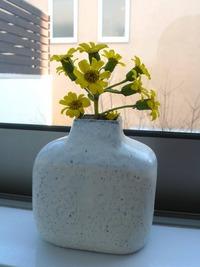 冬色の花瓶と小皿