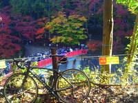 香嵐渓までサイクリング その5