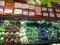 アメリカのスーパーマーケットと農業