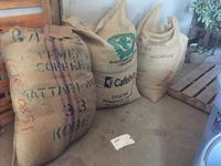 コーヒー生豆入荷しました。