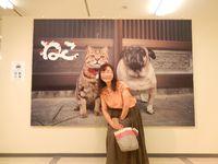 松坂屋8階岩合さんの猫写真展