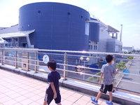 名古屋港水族館、夏休み最後のお出かけ